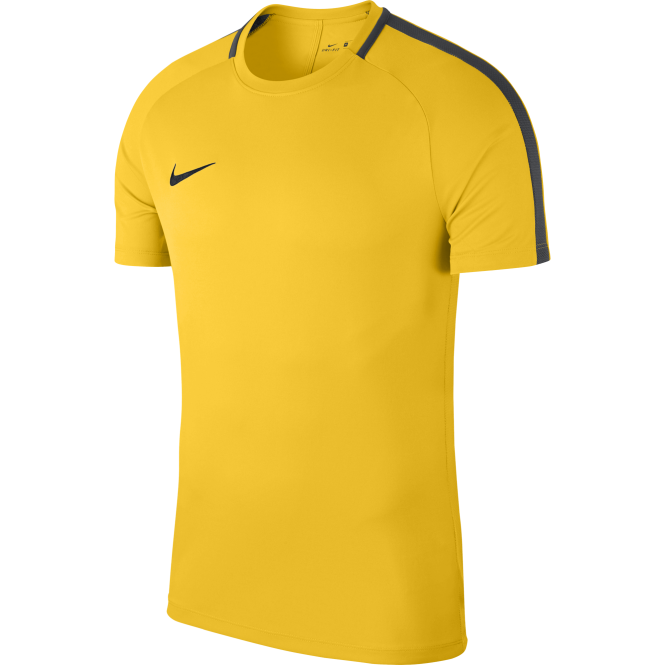 Nike Academy 18 Short Sleeve Training Top