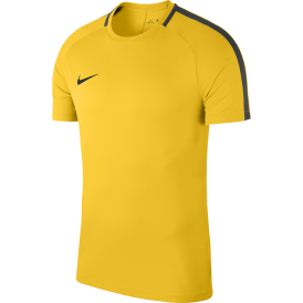 Academy 18 Short Sleeve Training Top