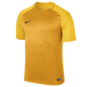 University Gold/Tour Yellow