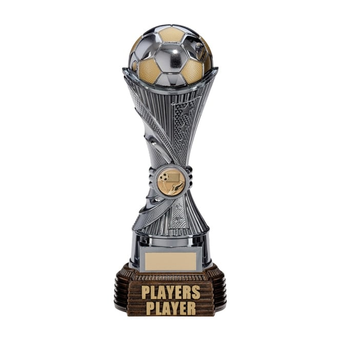 Trophies and Awards All Stars Players Player Award Gunmetal & Gold 260mm