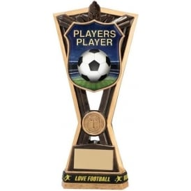 Titans Players Player Award Trophy (with Wristband)