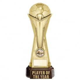 World Football Player of the Year (Classic Gold)